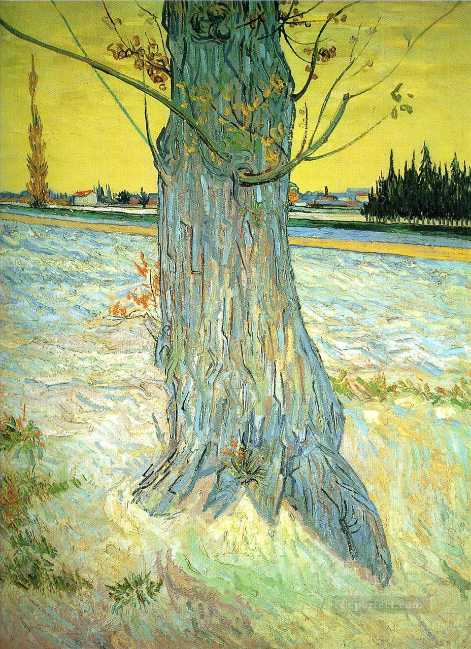 3 Trunk of an Old Yew Tree Vincent van Gogh