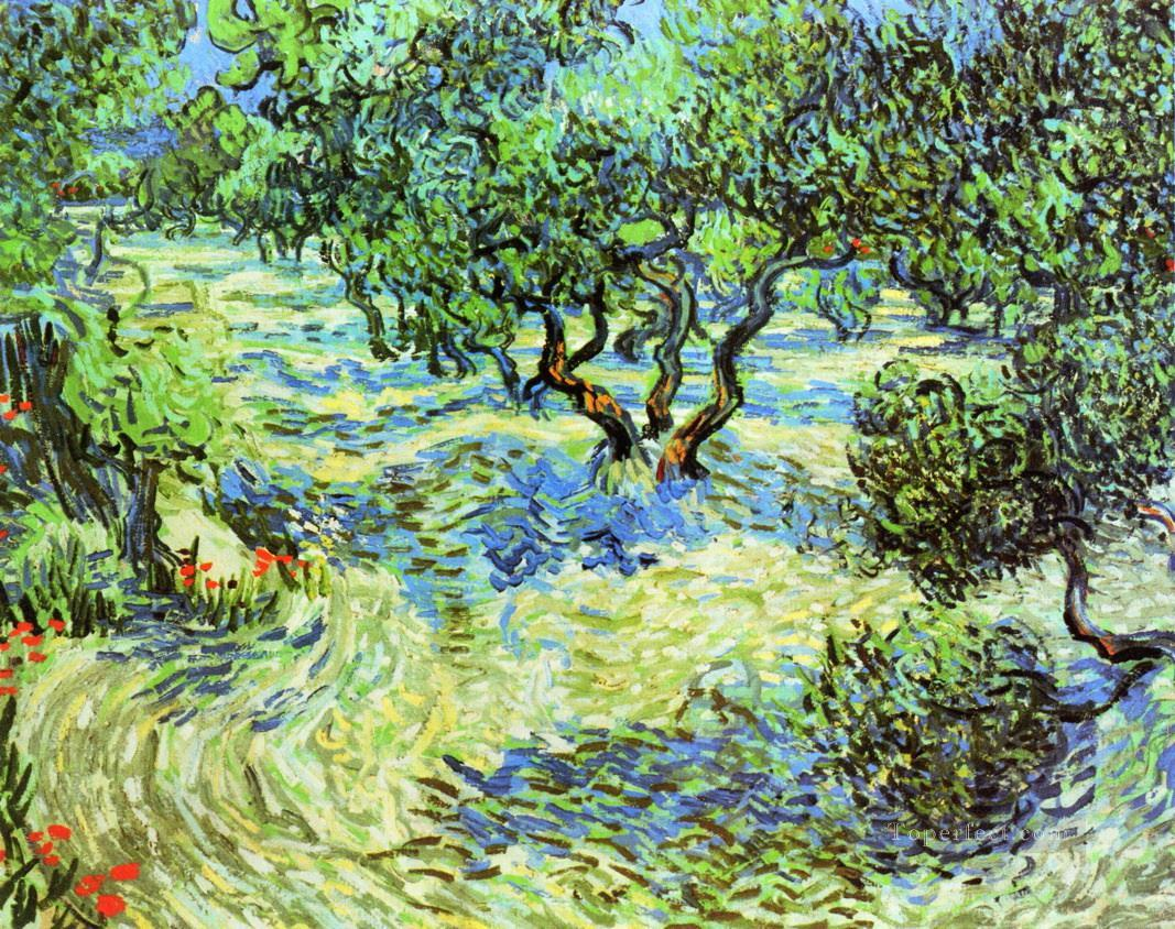 4 Olive Grove Bright Blue Sky Vincent van Gogh