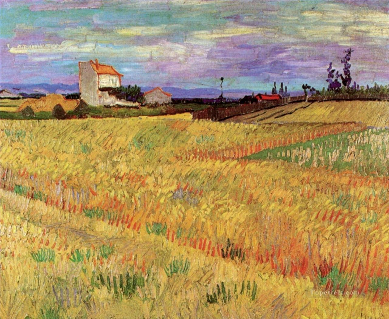 4 Wheat Field Vincent van Gogh