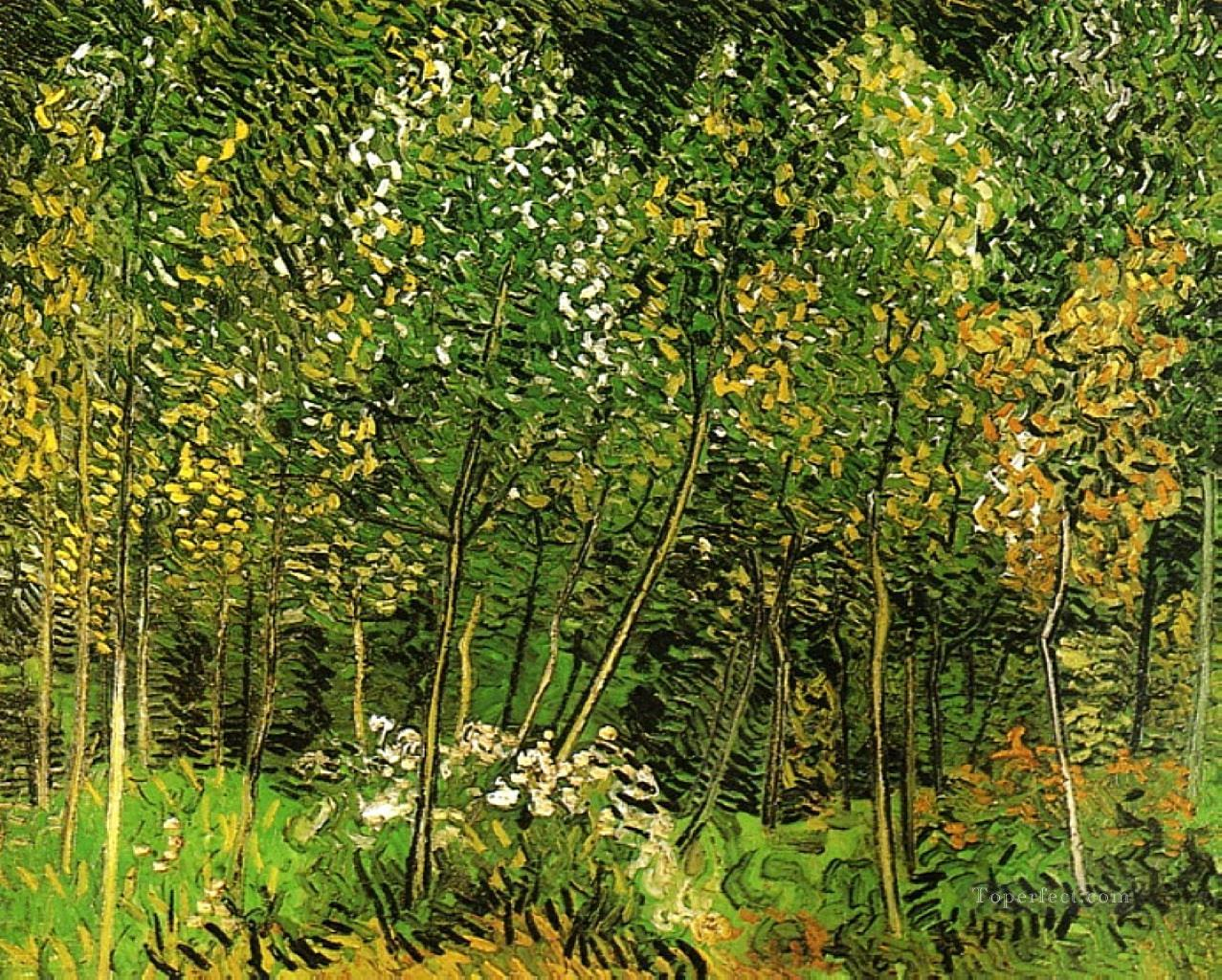 5 The Grove Vincent van Gogh
