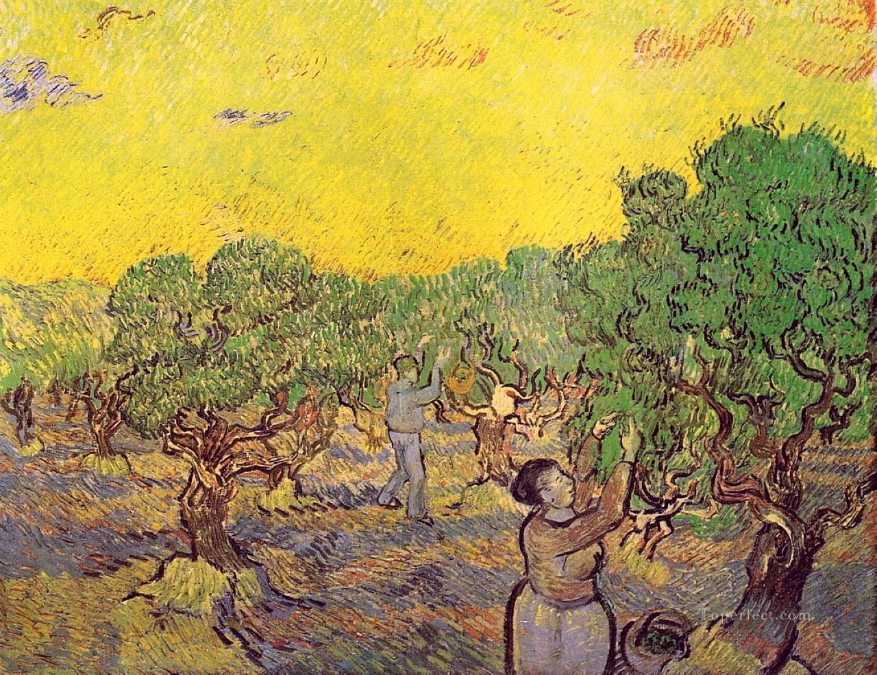 6 Olive Grove with Picking Figures Vincent van Gogh